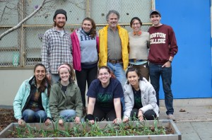 Volunteers at McKinley Collaborative Garden